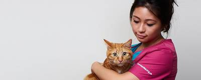 A PDSA Veteirnary Nurse with a ginger cat