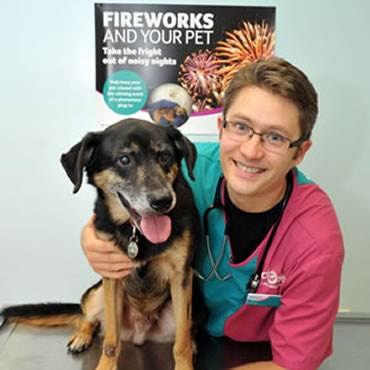 Zakk with PDSA senior vet Duncan Senior The charity is issuing fireworks advice to pet owners