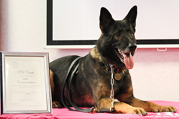 PD Canto receiving his PDSA Commendation