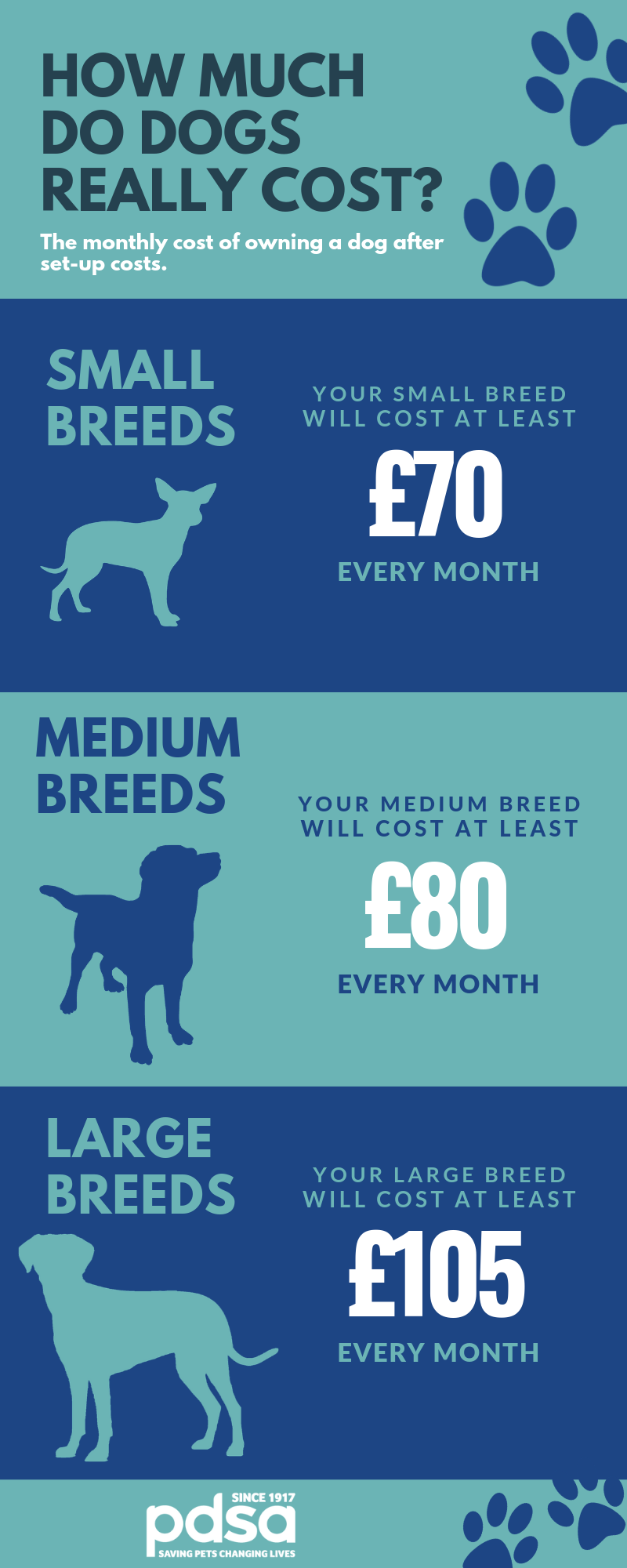 Monthly cost of owning a dog