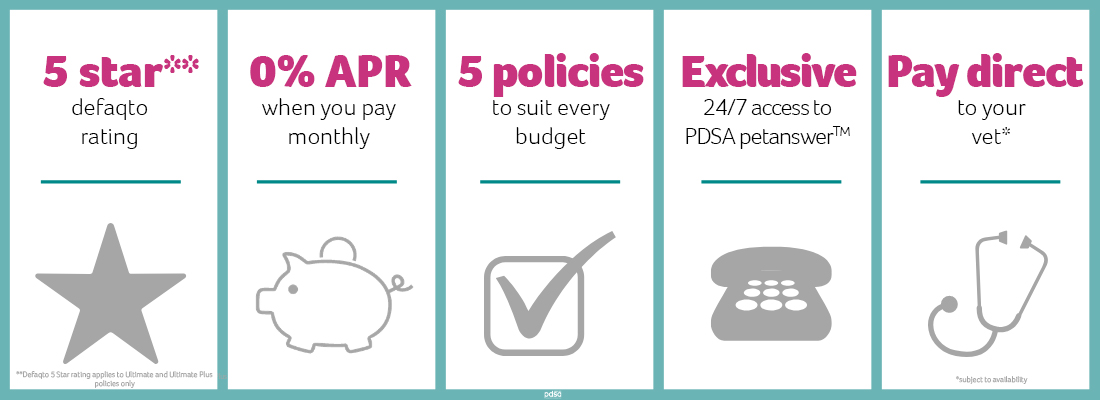 Graphic showing what PDSA Pet Insurance offers