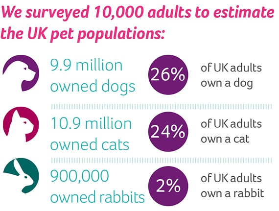 An infographic showing the UK's pet population statistics.